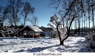 A backyard full with snow - A view of a houses backyard...