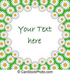 Design colorful chamomile background for text. Floral...