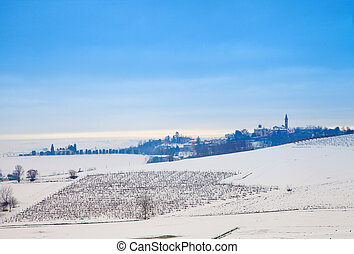 Snowscape with vineyard and country in the back