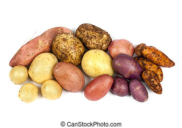 Potato Varieties Isolated on White - Different varieties of...