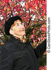 Senior woman in fall park - Senior woman looking up in fall...