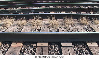 Weeds on a Railroad Track - Weeds growing on a railway...