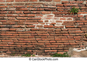 Full color brick wall for background or texture