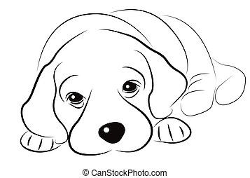 Puppy sketch isolated on white