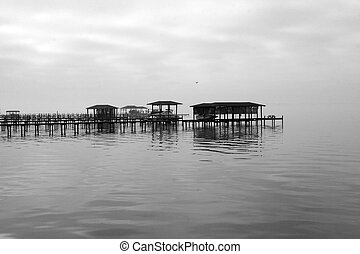 Fog covered dock