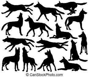 Wolf silhouettes - Set of editable vector silhouettes of...