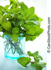 Fresh green mint in glass on the table
