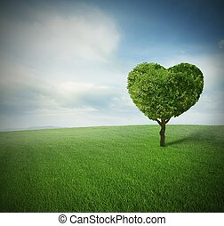 Heart tree in a paceful green field