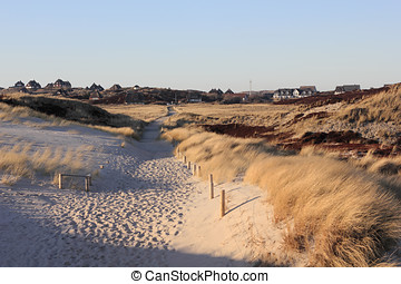 Path through the dunes in the evening light