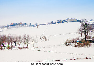 Snowscape with houses and electric poles under dark blue sky