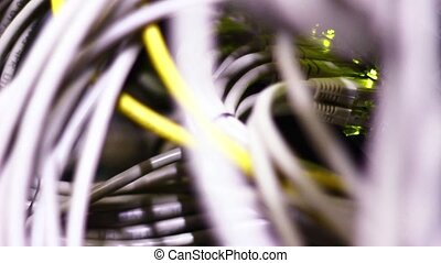 data router and lan cables