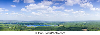 panorama sky cloud and forest.Forest and agricultural areas...