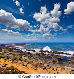 California Bean Hollow State beach in Cabrillo Hwy -...