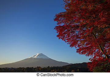 Mount Fuji with red autumn leaf Japan