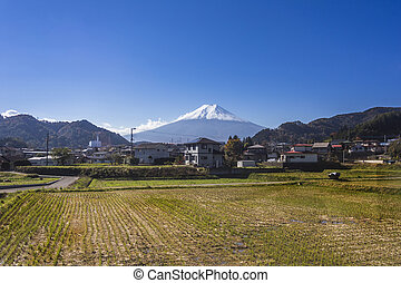 Mt Fuji with country home and rice field