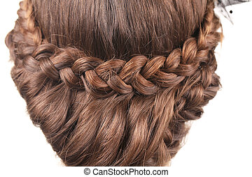 Long Brown Hair Braid. Back View. Whole background.