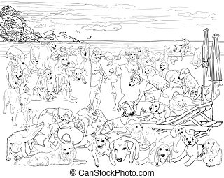 Pack of dog on the beach