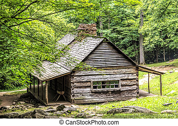 Log Cabin in the Woods - A log cabin in the woods The Noah...