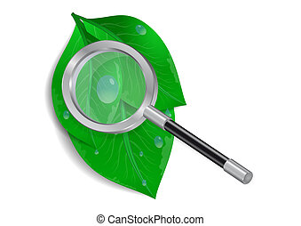 Magnifying glass with green leaves and waterdrops -...