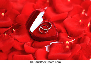wedding rings and roses petals