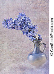 Blue hyacinth in a  vase