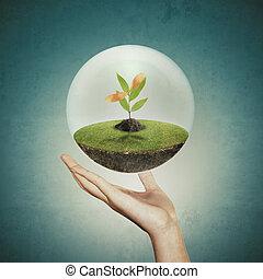 pequeno, planta, segurando, mão