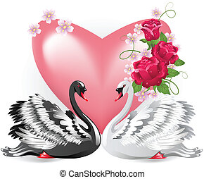 Elegant white and black swans with pink valentine heart