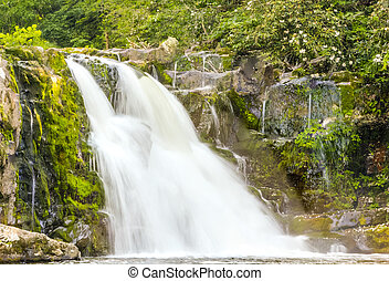 Abrams Falls at Cades Cove in the Great Smoky Mountains...
