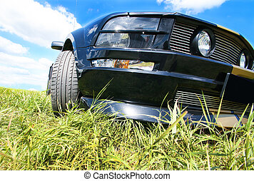 sports car on grass against the sky close up
