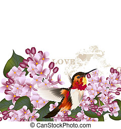 Beautiful vector pattern with lilac flowers and hummingbird...