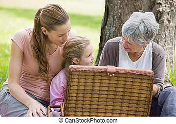 Grandmother mother and daughter with picnic basket at park -...