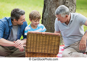 Grandfather father and son with picnic basket at park -...
