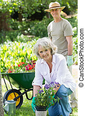 Mature woman engaged in gardening with man in background -...