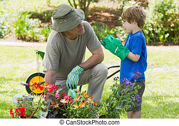 Grandfather and grandson engaged in gardening - View of a...