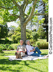 Mature couple sitting against a tree at park - Portrait of a...