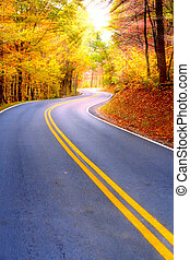 Winding road through fall forest in Appalachian Mountains