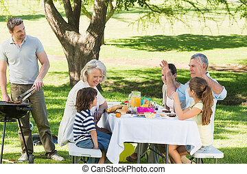 Father at barbecue grill with family having lunch in park -...