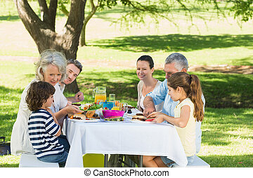 Extended family having lunch in lawn - Side view of an...