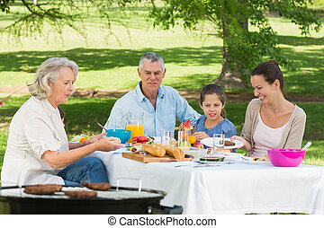 Grandparents mother and daughter having lunch in lawn - View...