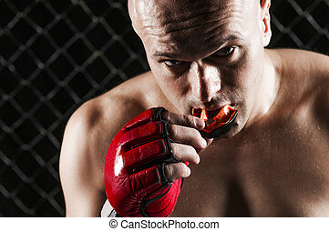 Mixed Martial Arts Fighter - The Fighter