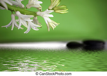 Tranquil spa background with spring flowers