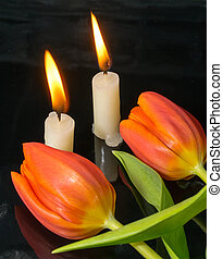 candles with tulips as metaphor and funeral decoration