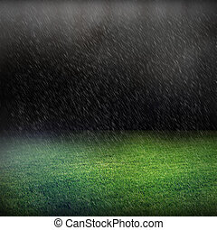 raining and green lawn