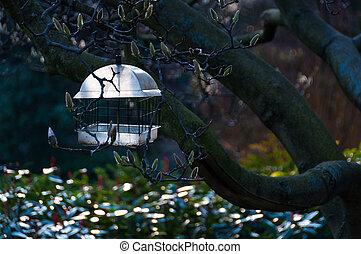 Birdfeeder in a tree - Birdfeeder hanged in a tree