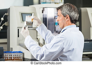 Researcher Analyzing Urine Samples In Lab - Confident male...