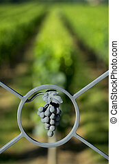 Sculpture Grape steel and alignment of vines in background