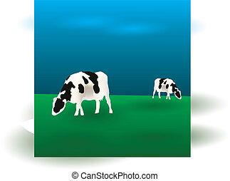 cows graze eps10