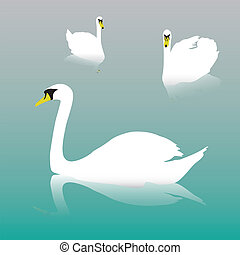 swan on the watter eps10