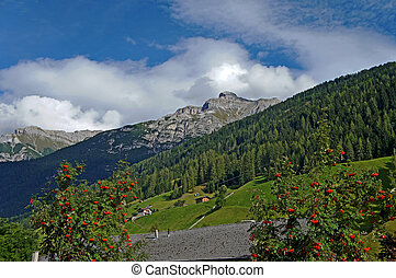 The Serles in the Stubai Valley in Tyrol - Mountain scenery...