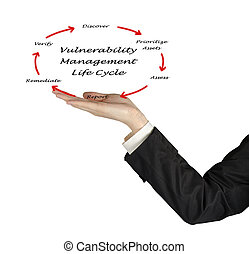 vulnerability management of life cycle